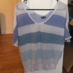 Express Sparkle knit top